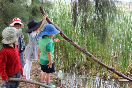 sticks in water 2