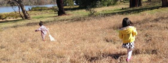 grass rabbits
