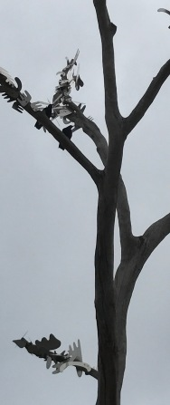 magpie in bird tree